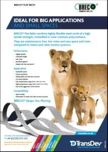 BRECO Flat Belts Leaflet
