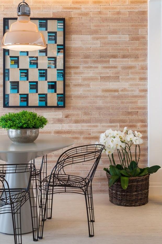 plantas ornamentais para interiores