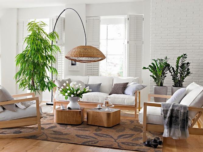 decora o com plantas naturais dicas de profissional como fazer fotos. Black Bedroom Furniture Sets. Home Design Ideas