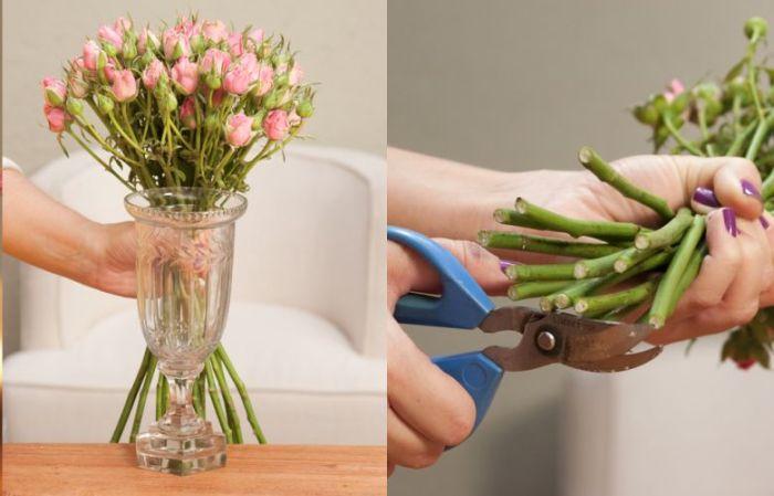 o preparo das flores