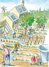 Comunidad resiliente - Transición Sostenible