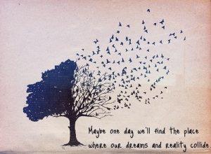 Manifesting dreams