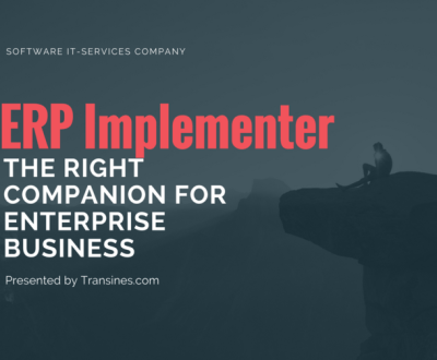 ERP-Implementer