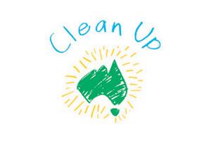 clean up community 300 x200