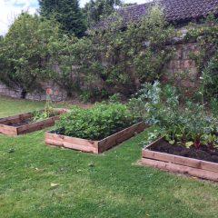 St Regs (Annex) Garden session