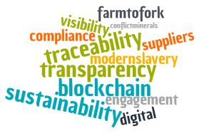 supply chain buzzwords