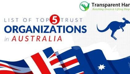 List of Top 5 Trust Organizations in UK - Transparent Hands