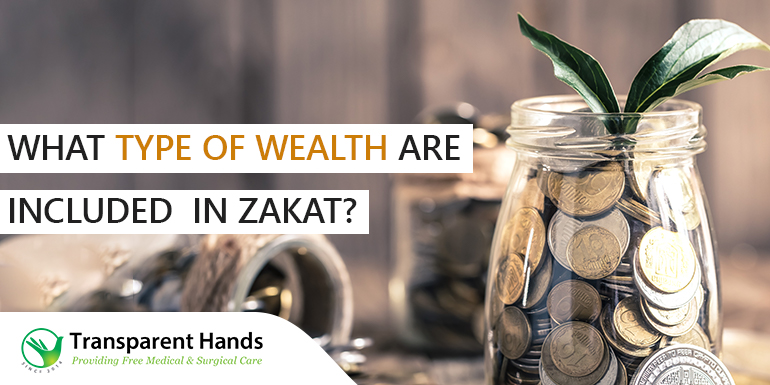 type of wealth in zakat