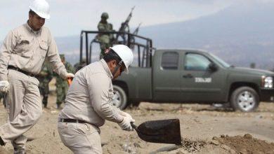 Photo of Tamaulipas, Guanajuato y Puebla el podio de ordeña de combustible