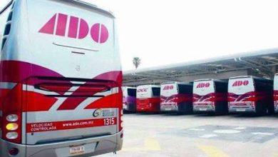 Photo of Puedes iniciar tu propio negocio con ADO