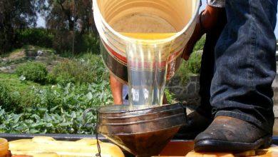 Photo of Robo de combustible a Pemex: 90 % de los casos quedan impunes