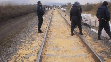 Photo of Maíz robado a Ferrosur está contaminado