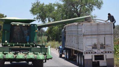 Photo of Temen en Sinaloa liberalización de transporte de carga