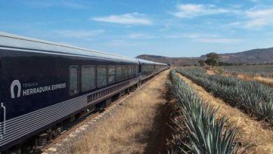 Photo of Ferromex relanza el nuevo recorrido del Tren Tequilero Herradura Express