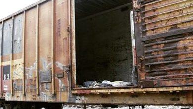 Photo of Narco usa trenes de Ferromex