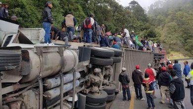 Photo of Chocan dos tractocamiones y se roban el ganado que transportaban