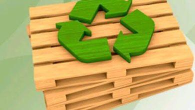 Photo of 5 claves sobre logística sostenible