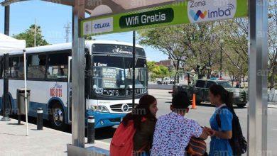 Photo of En Celaya los paraderos ya cuentan con WIFI