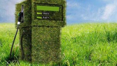 Photo of Mexico está en posibilidad de usar biocombustibles