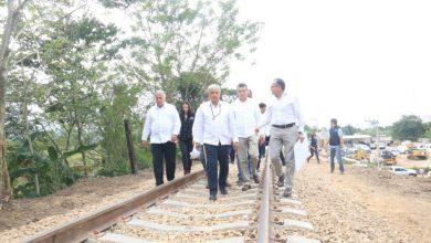Photo of Tren Maya debe suspenderse hasta conocer impacto ambiental : IMCO