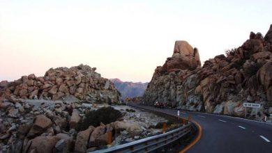 Photo of Las 5 carreteras que debes manejar en México