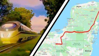 Photo of INAI ordena a SCT dar información sobre el beneficio del Tren Maya