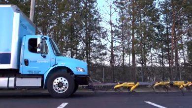 Photo of (Video) impresionante! Perros robot remolcan camión