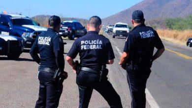 Photo of Se acabó la Policía Federal, y ahora… ¿Quíen podrá mordernos?