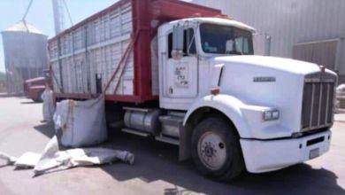 Photo of Se llevan 3 camiones del patio de transportista en Hermosillo