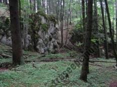 Stanca-in-Muntii-Piatra-Mare