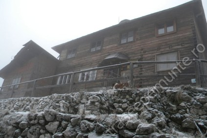 cabana-curmatura1