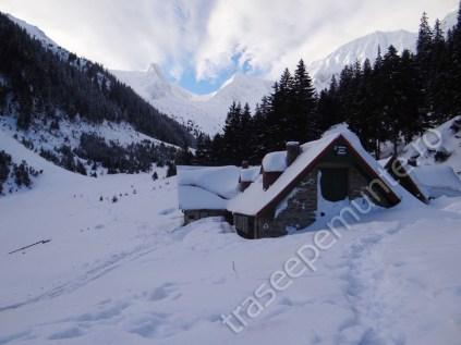 cabana-valea-sambetei-(1)