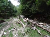 Valea-Martoiu