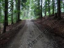Drum forestier Valea Babei
