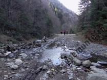 Valea Moasei Sebesului_albie