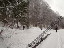 Valea Babarunca