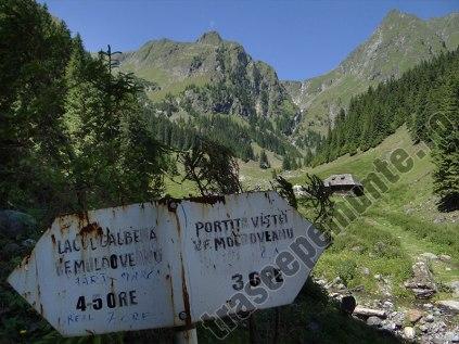 Valea Rea - marcaj montan