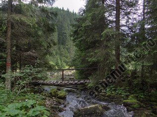 Paraul Ponor_podet de lemn