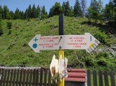 Marcaj in Valea Cuca_3