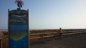Playa del Mattoral fuerteventura