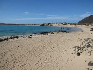 isola de los lobos 04 Playa de la Concha
