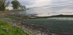 Situazione lago Trasimeno