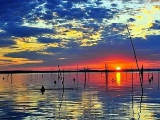 Trasimeno Oggi - Notizie dal Lago Trasimeno