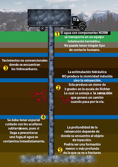 Infografía: Angie