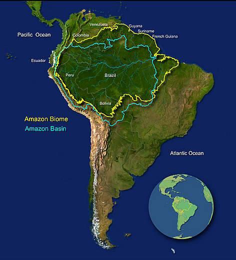Amazonia Brasil Colombia Peru Venezuela Bolivia