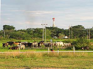 Refinería arrojando residuos contaminantes al medio ambiente rural, en el corregimiento de El Centro, en Barrancabermeja.