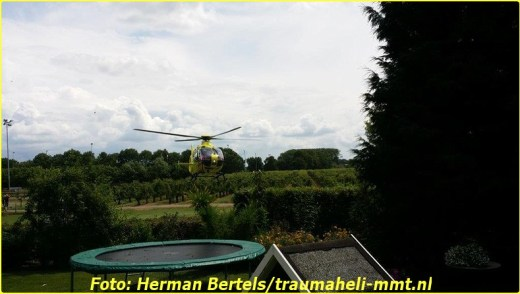 2014 06 29 beesd (6)-BorderMaker