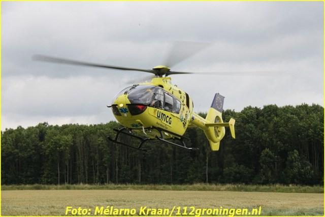 2014 07 05 beerta (14)-BorderMaker