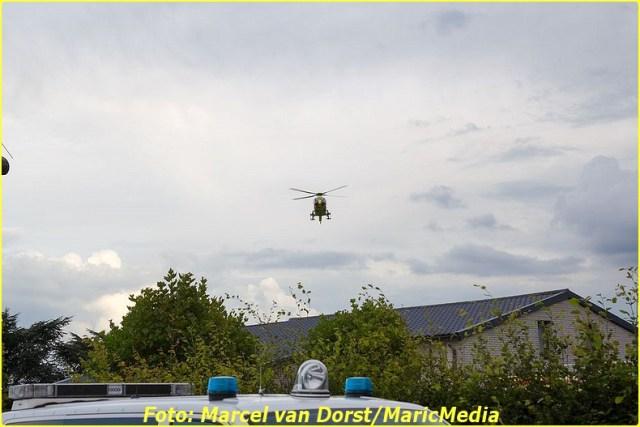 2014 08 14 DEN HOUT 01 (1)-BorderMaker