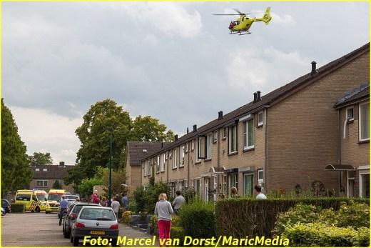 dongen01-BorderMaker